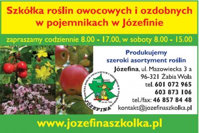 Szkółka roślin owocowych i ozdobnych w pojemnikach w Józefinie